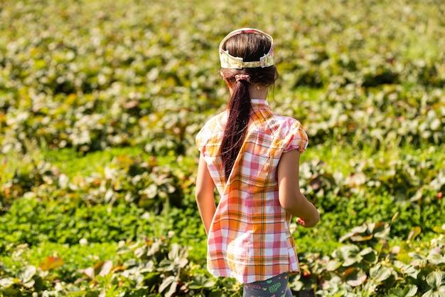 Klein meisje aardbeien plukken in het veld