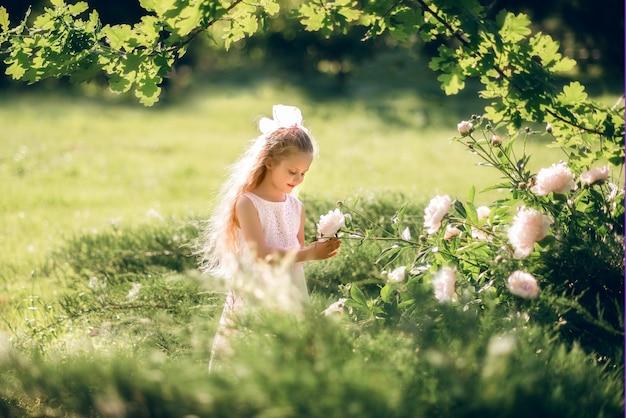 Klein meisje bewondert de bloemen. een kind zorgt voor pioenrozen