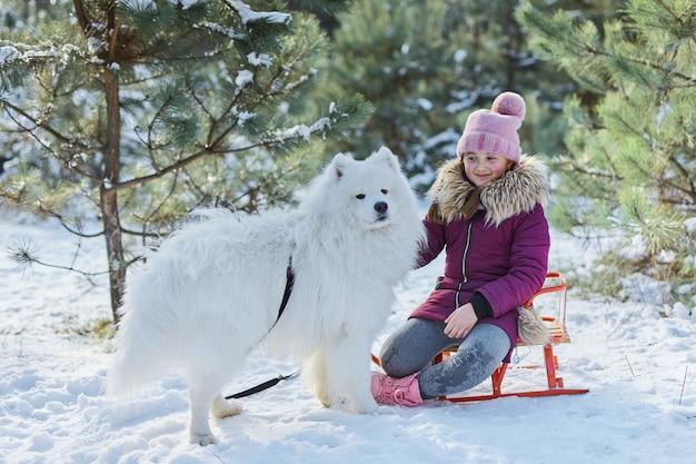 Klein meisje en haar hond in een besneeuwd bos. een klein meisje zit op een slee en speelt met haar hond de samojeed