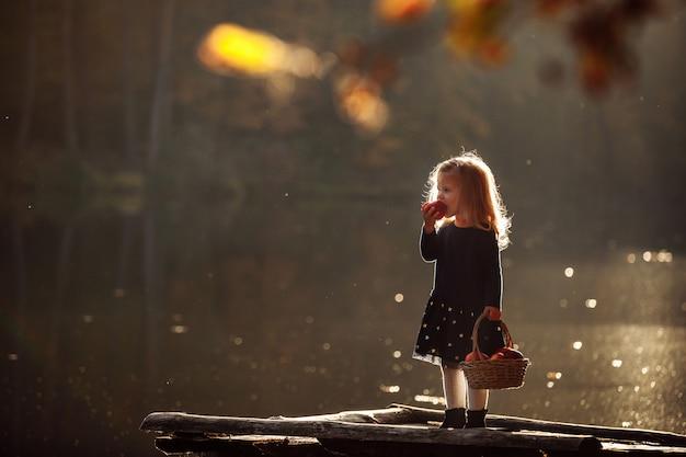 Klein meisje in de herfst met een mand met appels.