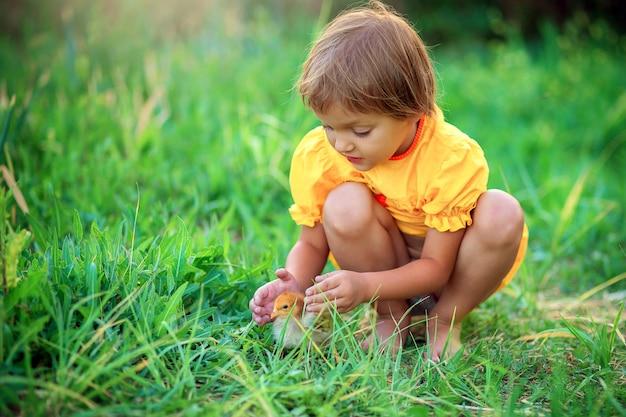 Klein meisje in een gele jurk zit in het gras en speelt met een kleine kip
