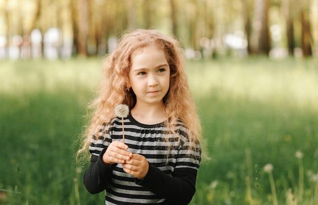 Klein meisje loopt in de zomer in het park en verzamelt paardebloemen