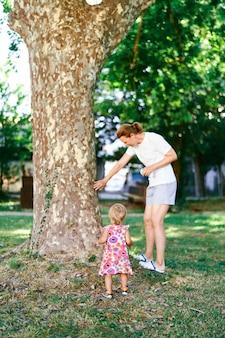 Klein meisje met haar grootmoeder staat in de buurt van een plataan in een groen park