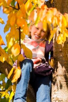 Klein meisje of kind in boom in kleurrijke herfst of herfst
