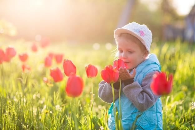 Klein meisje snuift een bloem in een veld met groen gras en bloeiende tulpen bij zonsondergang