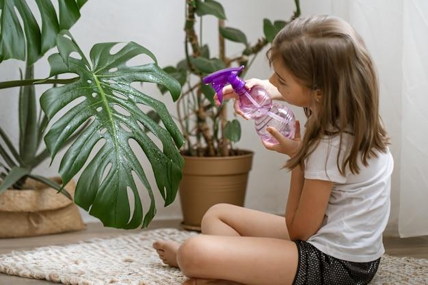 Klein meisje sproeit kamerplantbladeren, zorgt voor plant monstera.