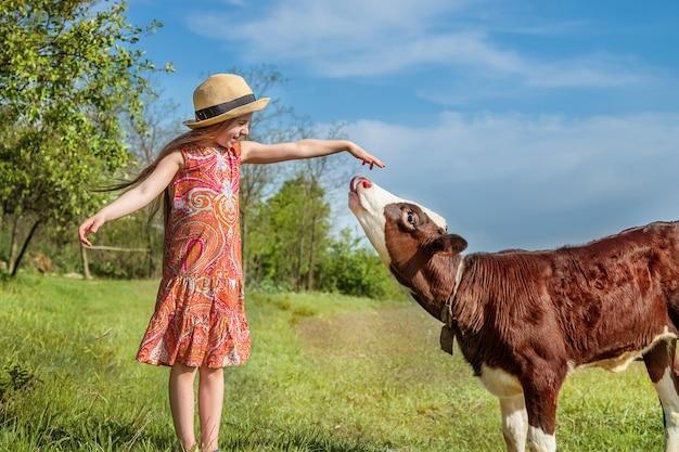 Klein meisje streelt een kalf in een veld.