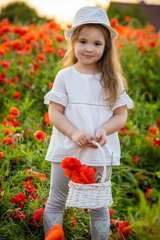 Klein schattig meisje met een mand met boeket klaprozen staat in een veld met klaprozen, tsjechische republiek