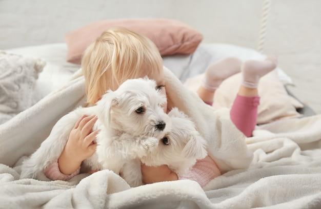 Klein schattig meisje met puppy's thuis