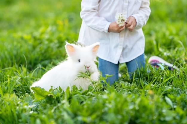 Klein schattig meisje speelt met konijn in de tuin in het voorjaar. detailopname