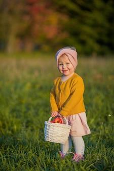 Klein schattig meisje wandelingen in de herfsttuin, houdt een mand met rode appels. portret van een gelukkig meisje in heldere herfstkleren. warme en heldere herfst.