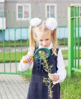 Klein schoolmeisje onderzoekt plant door vergrootglas