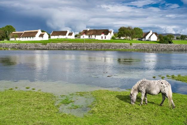 Klein wit huis aan de kust en groen veld, n