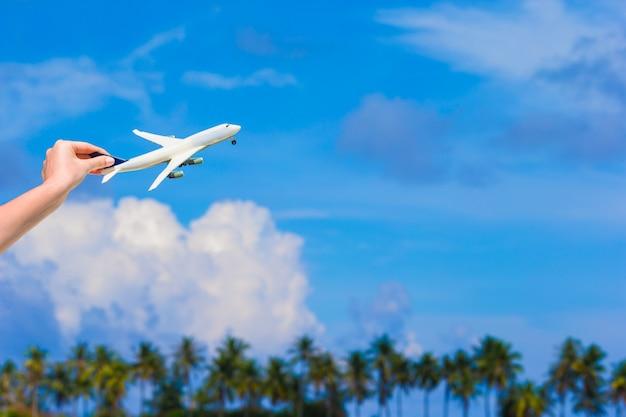 Klein wit vliegtuig van turquoise zee en palmbomen