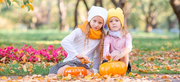 Kleine aanbiddelijke meisjes bij warme dag in de herfstpark in openlucht