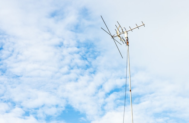 Kleine antenne