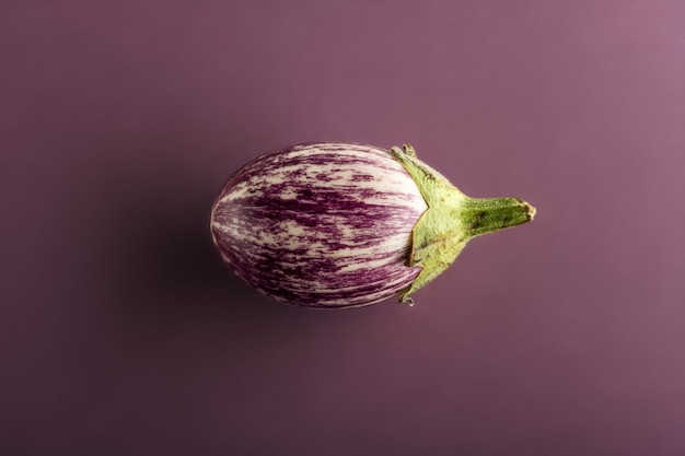 Kleine aubergine of aubergine op violette achtergrond