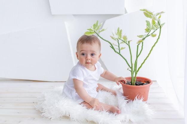 Kleine babymeisje 6 maanden oud zitten in witte kleren in een lichte appartement aan het raam met een kamer bloem, plant zorg baby