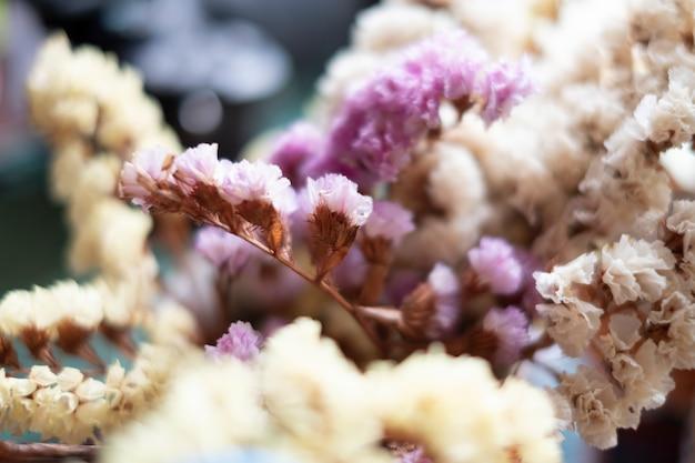 Kleine bloem