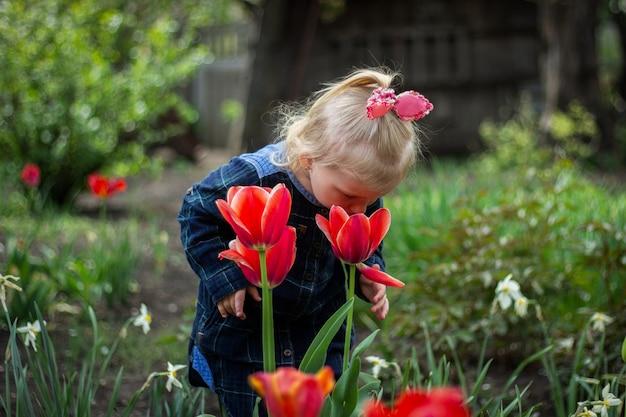 Kleine blonde meisjesbaby loopt in de tuin in de buurt van rode rode tulpen, geniet van de geur van lentebloemen.