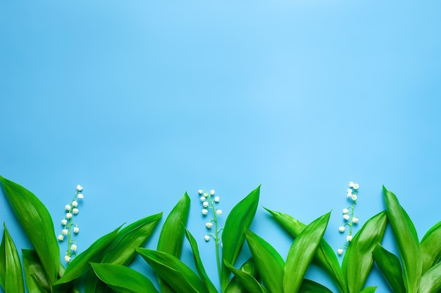 Kleine boeketten en groene bladeren van lelietje-van-dalen als een bloemenrand met platte kopieerruimte ...