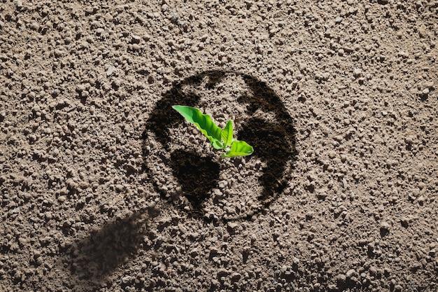 Kleine bomen geplant op aardevormige grond voor een groen concept. aarde dag concept