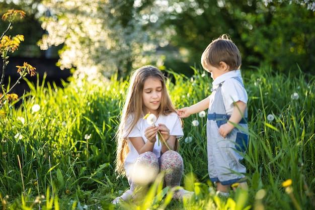 Kleine broer en zus in lichte zomerkleren. leuk en grappig spelen met pluizige witte en gele paardebloemen