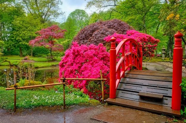 Kleine brug in japanse tuin, park clingendael, den haag, nederland