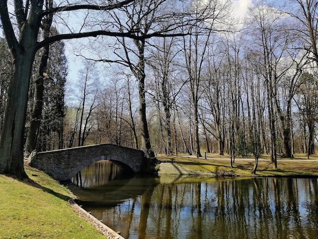Kleine brug over een rivier omgeven door groen in jelenia gora, polen