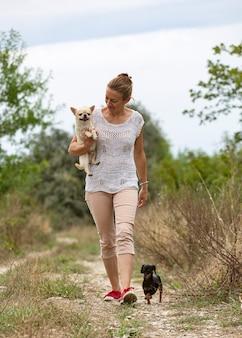 Kleine chihuahua en vrouw die vrij in de aard lopen