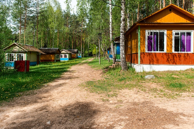 Kleine gekleurde huisjes in het bos