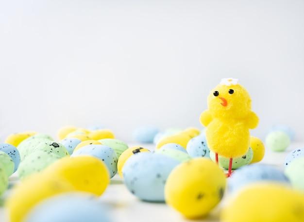 Kleine gele kip staat tussen pastelkleurige kleine eieren geïsoleerd op een witte achtergrond