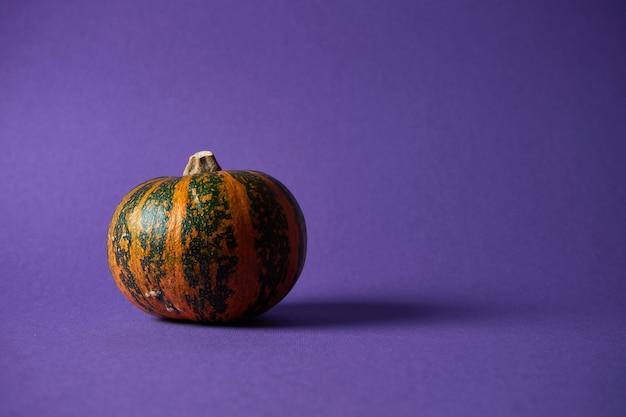 Kleine getextureerde pompoen op een paarse muur. halloween decoratie.