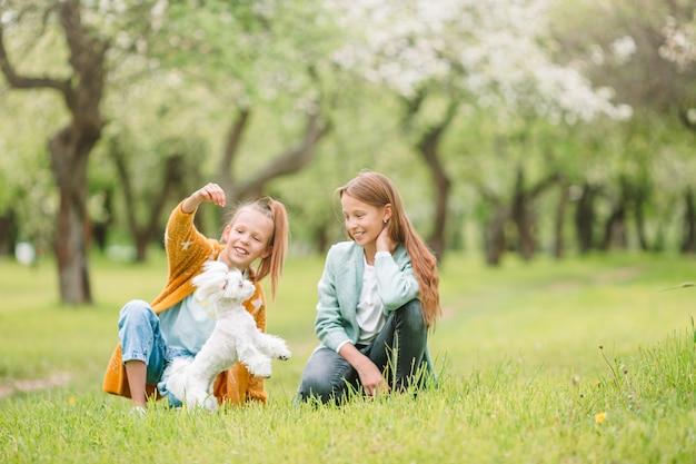 Kleine glimlachende meisjes die en puppy in het park spelen koesteren