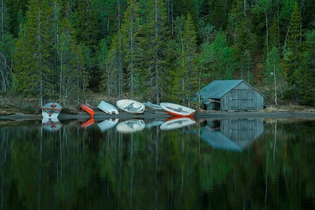 Kleine houten hut, naast boten aan de oever van een rustig meer, voor een groen bos