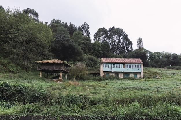 Kleine huizen op de heuvel in het bos