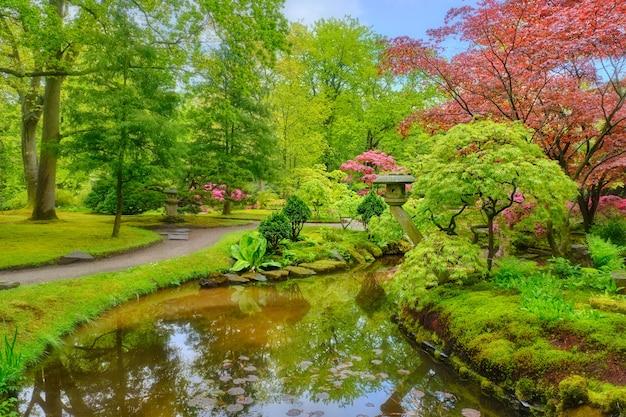 Kleine japanse tuin na regen, park clingendael, den haag, nederland