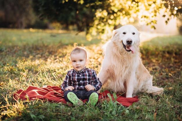 Kleine jongen en een golden retriever zitten in een mooi herfst park