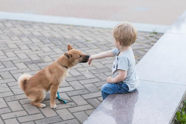 Kleine jongen en rode shiba inu-puppy die in de zomer buiten spelen, baby voedt zijn hond met vlees