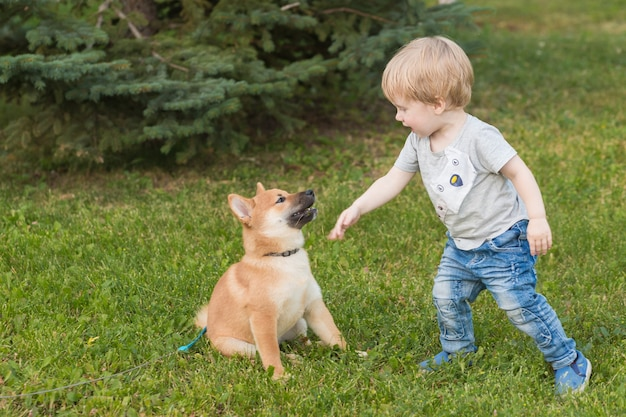 Kleine jongen en rode shiba inu-puppy die in de zomer buiten spelen