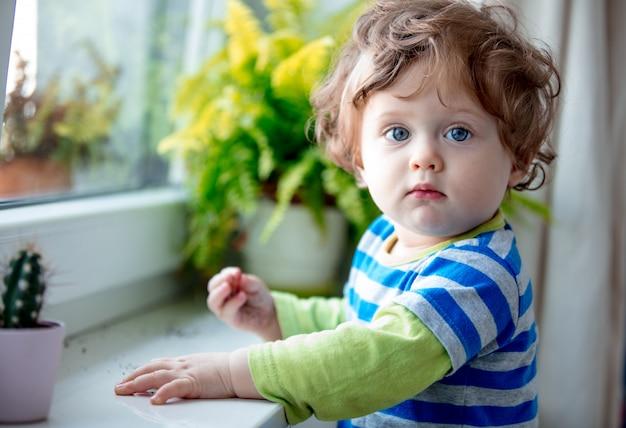 Kleine jongen in de buurt van vensterbank en plant