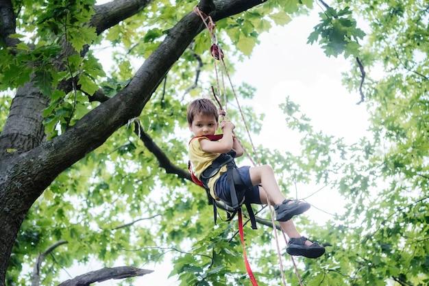 Kleine jongen in klimzadel die het touw in het bladerdak van de boom beklimt met alpine uitrusting en klimuitrusting, zomeractiviteiten voor kinderen