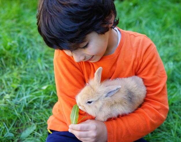 Kleine jongen met konijn