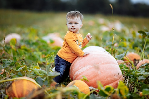 Kleine jongen met plezier op een rondleiding door een pompoenboerderij in de herfst