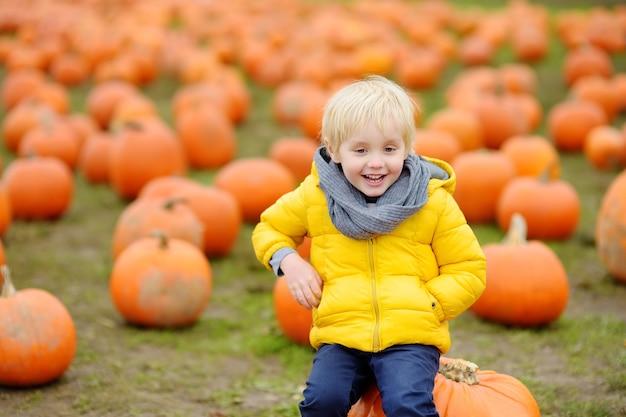 Kleine jongen op een pompoenboerderij in de herfst