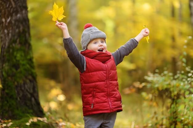 Kleine jongen tijdens wandeling in het bos op zonnige herfstdag