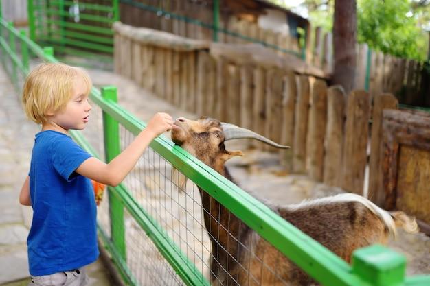 Kleine jongen voederen geit