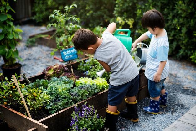 Kleine jongens die de planten water geven