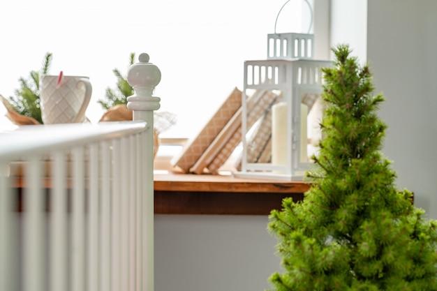 Kleine kerstbomen spruiten bij het raam