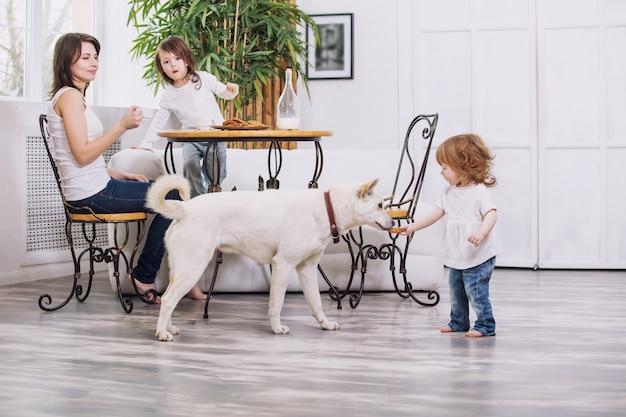 Kleine kindermeisjes zijn mooi en schattig als moeder en hond thuis samen koekjes eten